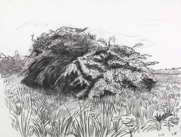 Landscape Art Drawing Pencil